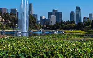 Bilder USA Parks Gebäude See Springbrunnen Seerosen Kalifornien Echo Park Lake Natur
