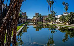Fotos Vereinigte Staaten Park Gebäude Teich San Diego Palmengewächse Balboa Park Natur