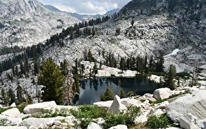 Fotos Vereinigte Staaten Park Gebirge See Steine Landschaftsfotografie Fichten Sequoia National Park Natur