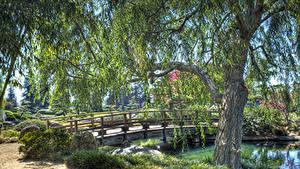 Fotos Vereinigte Staaten Park Teich Brücken Kalifornien Los Angeles Bäume Strauch HDRI Natur