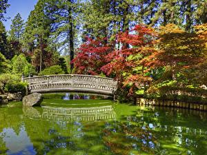 Hintergrundbilder USA Park Teich Brücken Steine Washington HDRI Bäume Japanese Garden Spokane Natur