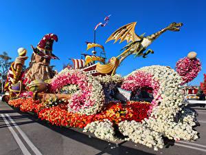 Fotos Vereinigte Staaten Park Rosen Kalifornien Design Pasadena Blumen