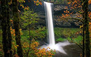 Hintergrundbilder USA Park Wasserfall Herbst Felsen Baumstamm Laubmoose Silver Falls State Park Oregon Natur