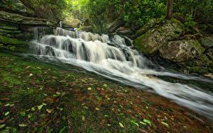 Fotos USA Park Wasserfall Steine Laubmoose Felsen Blackwater Falls State Park Virginia
