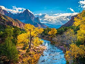Bilder Vereinigte Staaten Park Zion-Nationalpark Gebirge Flusse Herbst Wolke Bäume Virgin River, Utah