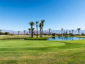 Hintergrundbilder Vereinigte Staaten Teich Acker Golf Kalifornien Palmen Rasen Borrego Springs Resort Golf Course