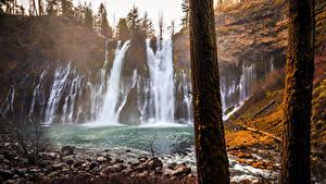 Fotos Vereinigte Staaten Wasserfall Herbst Kalifornien Felsen Baumstamm McArthur-Burney Falls Memorial State Park Natur
