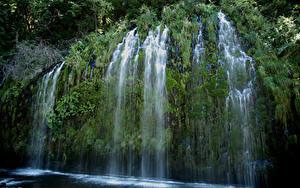 Bilder USA Wasserfall Kalifornien Felsen Laubmoose Mossbrae falls Natur