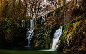 Fotos USA Wasserfall Kalifornien Felsen Laubmoose Bäume San Martin Natur