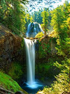Bilder Vereinigte Staaten Wasserfall Washington Felsen Laubmoose Skamania Natur