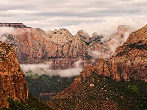 Bilder Vereinigte Staaten Zion-Nationalpark Park Berg Canyon