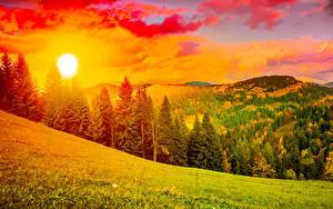 Fotos Ukraine Landschaftsfotografie Sonnenaufgänge und Sonnenuntergänge Gebirge Karpaten Fichten Sonne Gras