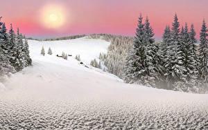 Bilder Ukraine Winter Karpaten Transkarpatien Schnee Fichten Sonne