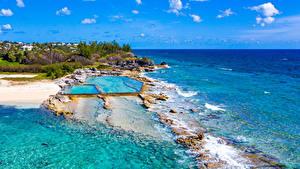 Bilder Vereinigtes Königreich Küste Meer Tropen Schwimmbecken Bermuda