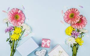 Hintergrundbilder Valentinstag Blumensträuße Gerbera Chrysanthemen Farbigen hintergrund Geschenke Herz Notizblock Vorlage Grußkarte Schleife Blüte