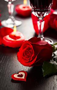 Bilder Valentinstag Rosen Großansicht Rot Herz Blumen