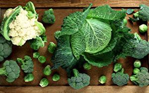 Fotos Gemüse Kohl Lebensmittel