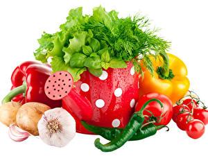 Fotos Gemüse Knoblauch Zwiebel Peperone Tomate Chili Pfeffer Dill Weißer hintergrund Lebensmittel