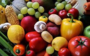 Fotos Gemüse Tomaten Pilze Trauben Zitronen Paprika Obst