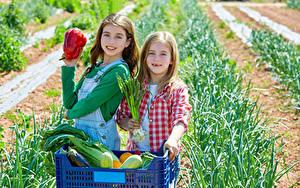 Bilder Gemüse Zwei Kleine Mädchen Blick kind