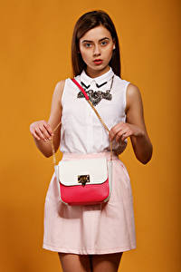Bilder Viacheslav Krivonos Handtasche Braunhaarige Model Starren Farbigen hintergrund Lera Mädchens