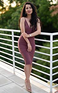 Bilder Victoria Bell Brünette Pose Kleid Starren junge frau
