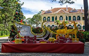 Hintergrundbilder Vietnam Parks Neujahr Hirsche Tannenbaum Schlitten Geschenke Park Bao Dai King Palace in Da Lat Natur