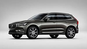 Fotos Volvo Grauer Hintergrund Grau Softroader Seitlich XC60, T6, Inscription, 2017 Autos
