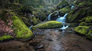 Bilder Wasserfall Steine Laubmoose Bach Natur