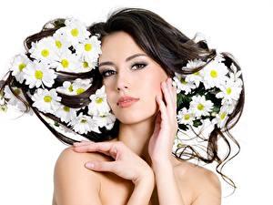 Fotos Weißer hintergrund Brünette Blick Hand Hübsch junge Frauen
