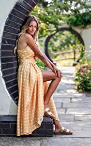 Bilder Starren Kleid Bein Blond Mädchen Wikky junge Frauen