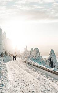 Bilder Winter Wege Schnee 2 Geht Bäume