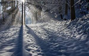 Hintergrundbilder Winter Schnee Schatten Lichtstrahl Bäume