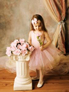 Hintergrundbilder Rosen Kleine Mädchen Rosa Farbe Kleid Kinder