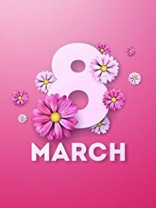 Bilder 8 März Englisch