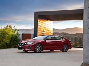Fotos Nissan Bordeauxrot Metallisch 2019 Maxima Platinum Autos