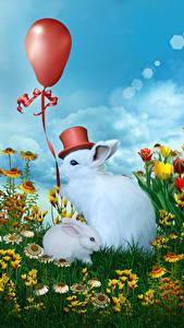 Fondos de Pantalla Conejo Cachorros Globo juguete Sombrero de