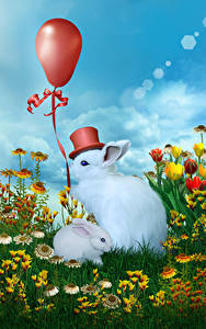 Hintergrundbilder Kaninchen Jungtiere Luftballon Der Hut Tiere