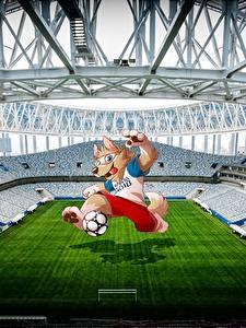 Hintergrundbilder Fußball Stadion World Cup 2018 Mascotte