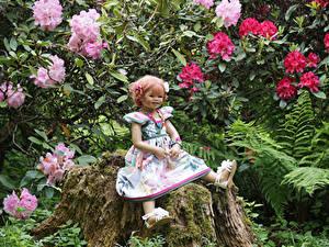 Bilder Park Baumstumpf Kleine Mädchen Puppe Kleid Laubmoose Grugapark Essen Natur