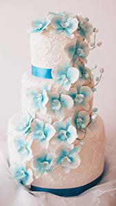 Bilder Süßigkeiten Torte Design Lebensmittel