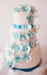 Bilder Süßigkeiten Torte Design