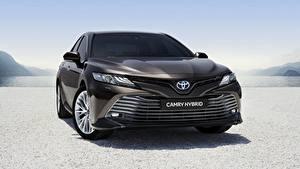 Fotos Toyota Vorne Schwarz Hybrid Autos Camry Hybrid 2019 auto