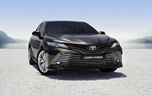 Fotos Toyota Vorne Schwarz Hybrid Autos Camry Hybrid 2019