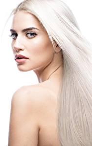 Bilder Blond Mädchen Schöne Haar Weißer hintergrund