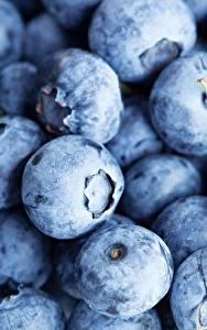 Fotos Beere Viel Großansicht Heidelbeeren Lebensmittel