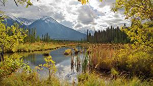 Hintergrundbilder Kanada Herbst Gebirge See Landschaftsfotografie Ast Vermilion Lakes