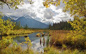Hintergrundbilder Kanada Herbst Gebirge See Landschaftsfotografie Ast Vermilion Lakes Natur