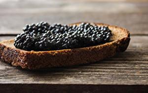 Fotos Butterbrot Brot Caviar Bretter