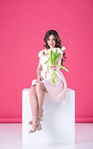 Bilder Tulpen Farbigen hintergrund Braunhaarige Sitzen Kleid Lächeln junge frau